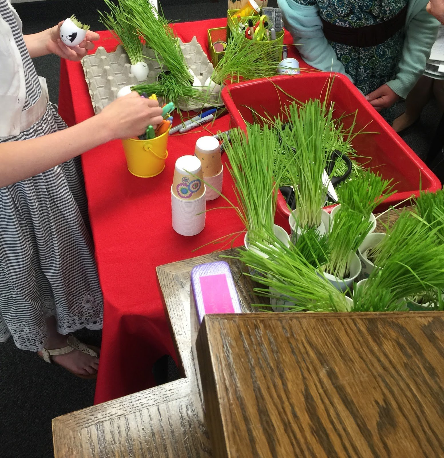 Camille's Primary Ideas: Faith Singing Time Lesson Plan Idea using seeds