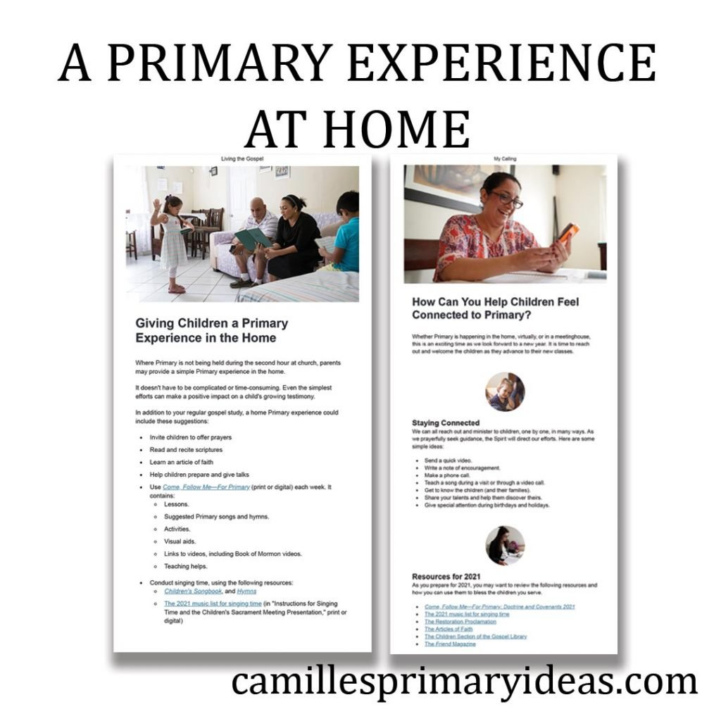 Camille's Primary Ideas: A Primary Experience at Home
